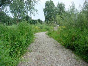 puinweg