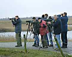 Vogelwerkgroep in aktie