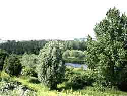 Gorzenpark