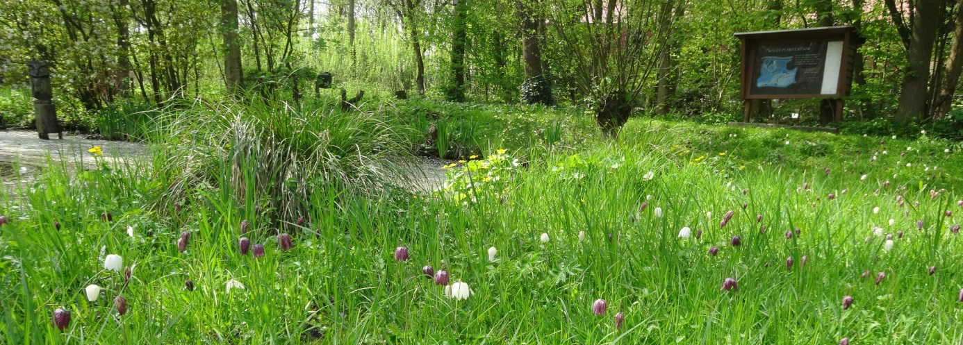 plantentuin-charlois